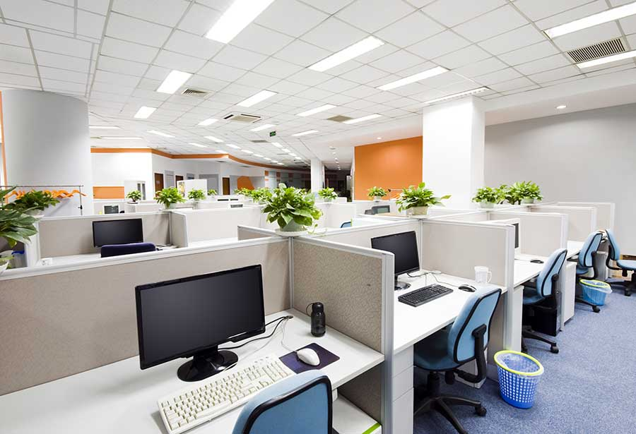 Cubicle Office Layout